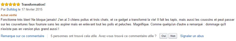mini_turbobrosse_dyson_meilleur_commentaire_amazon